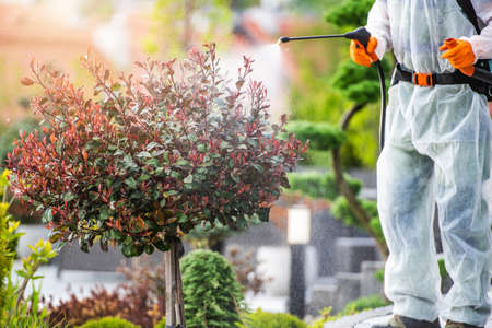 Spring Time Backyard Garden Plants and Trees Fungicide and Pesticide Job. Landscaping and Gardening Industry Job. Фото со стока