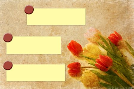 Grunge paper design for information in scrapbooking style Stock Photo - 6551508