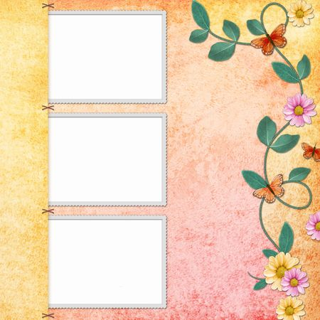 background with decorative frames with butterfly photo