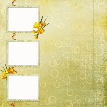 lacet: Spring background  with frame and flowers  Stock Photo