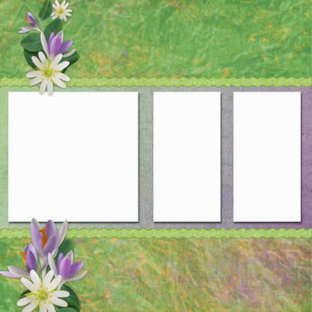 Spring background with frames photo