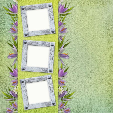 Spring background with frame and  flowers Stock Photo