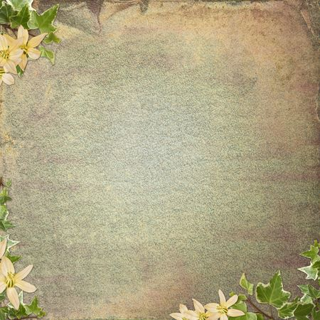 the album announcement: Vintage background  for invitation