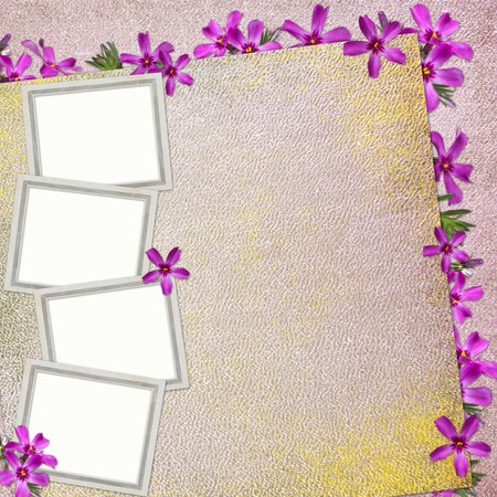 mauve: Summer background with frame and flowers  Stock Photo