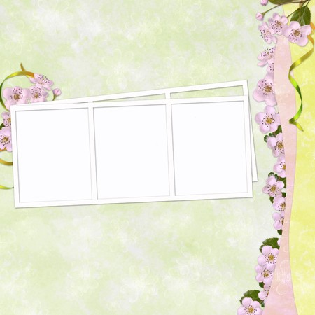 Summer background with frame and flowers photo
