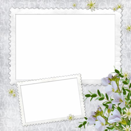 album page: Summer background with frame and flowers Stock Photo