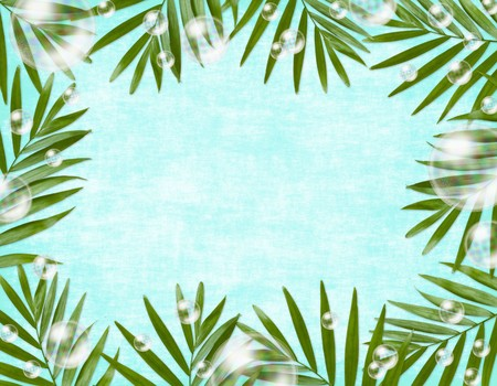 summer background  for card photo