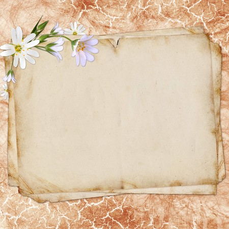 old paper on textured background for invitation or congratulation. photo