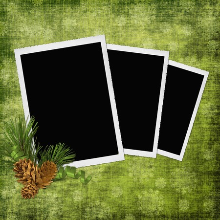 Abstract background with frames and pinecones photo