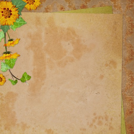 congratulation card: Background for congratulation  card