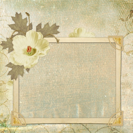 Framework for invitation or congratulation. photo