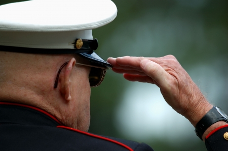 armed services: Old Marine saluting during a military ceremony