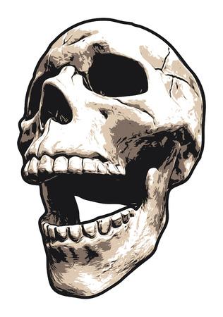 Realistic Laughing Human Skull