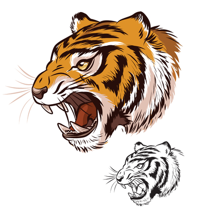 Tiger Head Mascot Profile 免版税图像 - 114221476