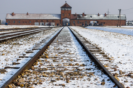 greatly: In early 1943, the Nazis decided to increase greatly the gassing capacity of Birkenau.Crematorium II, originally designed as a mortuary, with morgues in the basement and ground-level furnaces, was converted into a killing factory by placing a gas-tight do Editorial