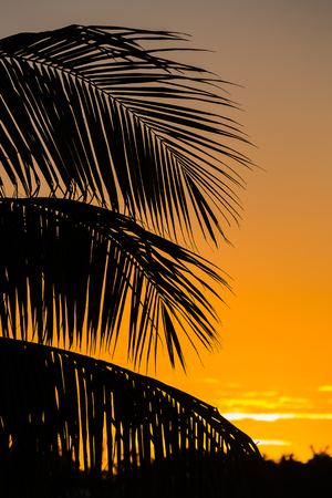 them: The locals call it Jardines del Rey.  Easy to see why because it in English it means Gardens of the King.This is also my penultimate image in this lengthy series & I hope youve enjoyed them just half as much as I enjoyed taking them. Stock Photo