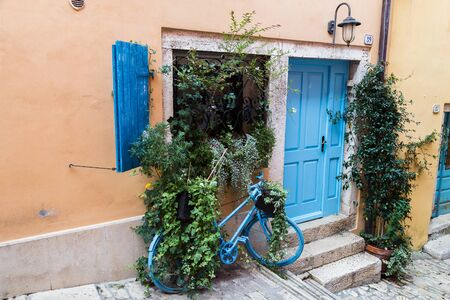 Splashes of green leaves fall out of the window of a pretty house in Rovinj and onto a parked bicycle.