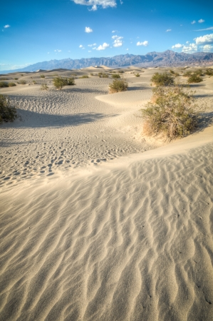 Korn: Death valley, desert natural sand dunes near devils korn field