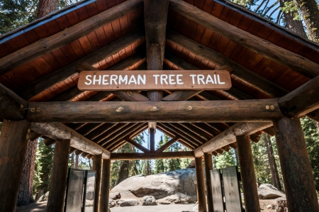sherman tree trail Sequoia national park entry photo