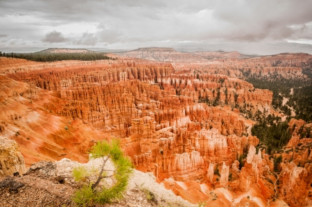 Bryce Canyon red amphitheater west USA utah 2013 photo