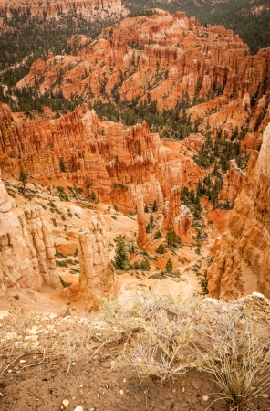 Canyon Bryce rocks and trees amphitheater west USA utah 2013 photo