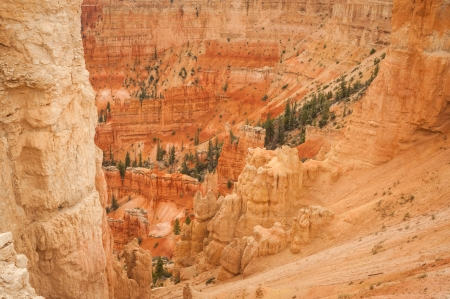 Canyon Bryce  red rocks amphitheater west USA utah 2013 photo