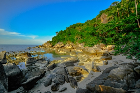 panoramic tropical beach with coconut palm. Koh Samui, Thailand, Asia photo