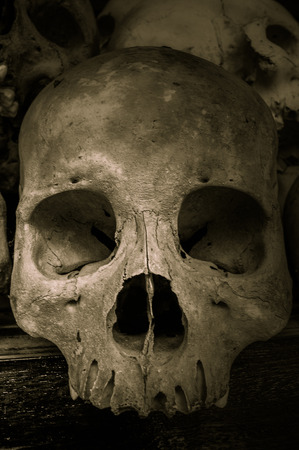 slaughter: Skulls from the Killing Fields in Cambodia, this happened from around 1975 till 1979. Asia Stock Photo