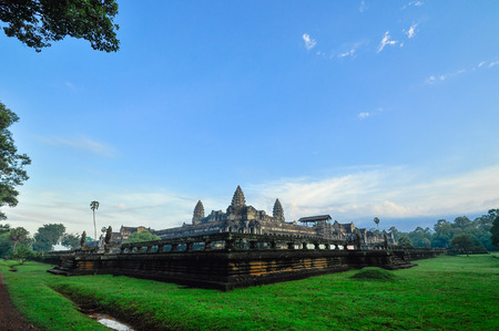 Giant tree covering Ta Prom and Angkor Wat temple, Siem Reap, Cambodia Asia photo
