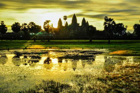 Giant tree covering Ta Prom and Angkor Wat temple, Siem Reap, Cambodia Asia Standard-Bild