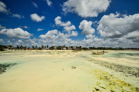 Zanzibar beach and coral rocks bule green ozean Tanzania photo