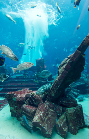 Centrepiece: DUBAI, UAE - DECEMBER 31: Large aquarium in Hotel Atlantis (1,539 spacious guest rooms including 166 suites) on man-made island of Palm Jumeirah at December 31, 2015 in Dubai, United Arab Emirates.