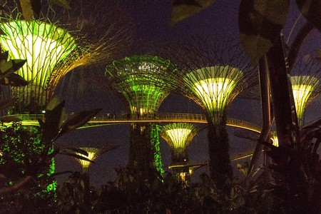 SINGAPORE - JANUARY 15: Night view of Supertree Grove at Gardens by the Bay on January 15, 2016 in Singapore. Spanning 101 hectares of reclaimed land in central Singapore, adjacent to the Marina Reservoir.