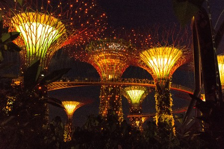 hectares: SINGAPORE - JANUARY 15: Night view of Supertree Grove at Gardens by the Bay on January 15, 2016 in Singapore. Spanning 101 hectares of reclaimed land in central Singapore, adjacent to the Marina Reservoir.