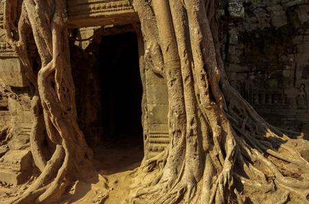 hinduismo: templo de Ta Som Angkor Wat, Siem Reap, Camboya edificios de cultivo Hinduismo Khmer
