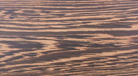 wengue: Textura de wenge en el piso