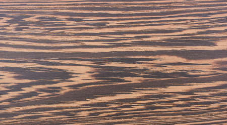 Texture of wenge on the floorboard  photo