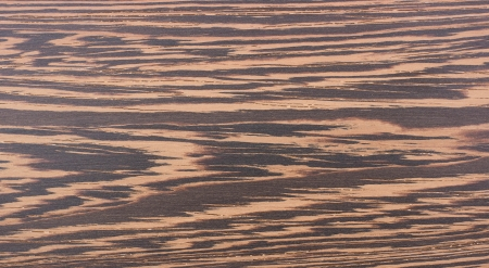 Texture of wenge on the floorboard