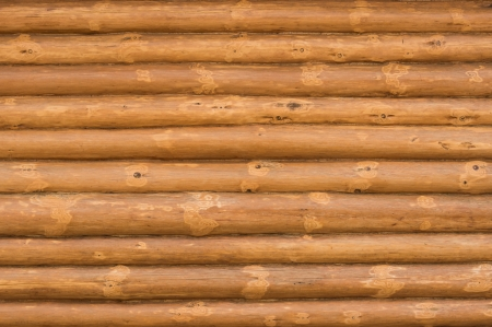 Texture consisting of chopped pine tree. Stock Photo