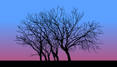Tree without leaves in late autumn sunset. Illustration