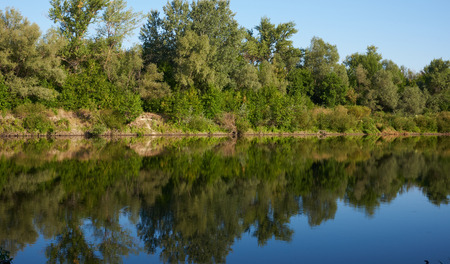 Forest reflection in the river to create horizontal symmetry. Stock Photo