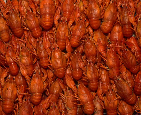 Texture in the form of boiled crayfish.