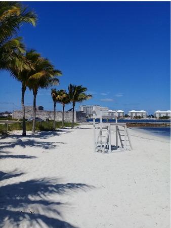 Palm trees alongside white sandy beach in Nassau Bahamas. Stock Photo - 123741975