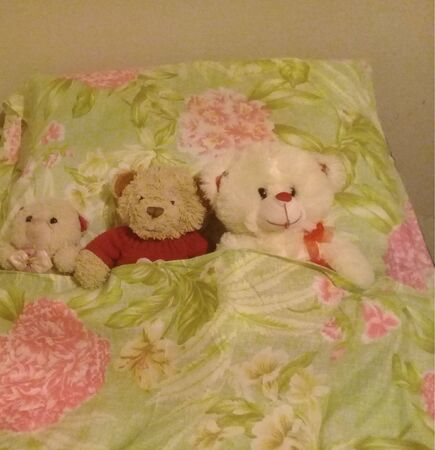 Teddy bears in bed