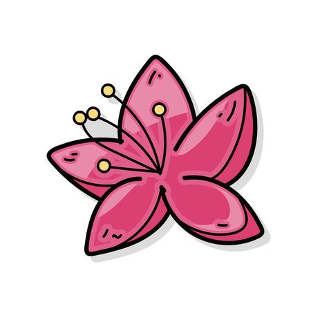 plum: Plum flower doodle
