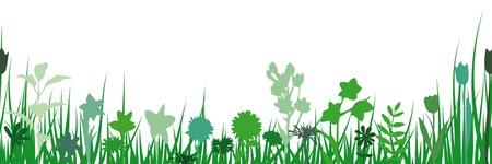 springtime: Springtime seamless silhouette Illustration