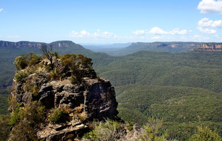 One summer day in the Blue Mountains