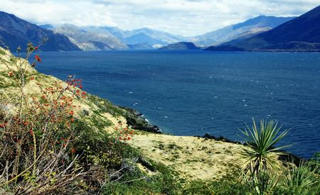 by the lake on the South Island, New Zealand Stock Photo - 5965663