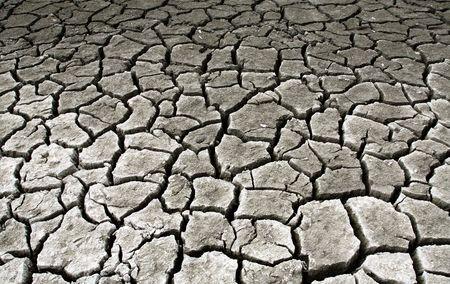 Drought stricken landscape