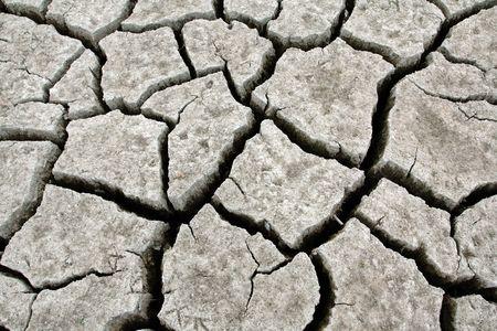 Drought Strcken Landscape